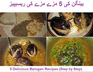 5 Mouthwatering Baingan Recipes (Easy and Step by Step)