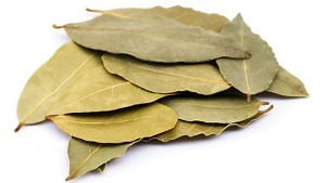Bay Leaf (Tej Patta) Benefits