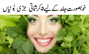 Best 5 Herbs for Skin Care