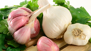 Garlic Benefits in Urdu (Lahsun Se Ilaj)