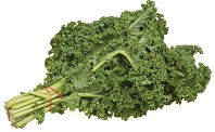 Kale Vegetable Benefits in Urdu