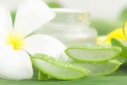 Making Aloe Vera Lemon Juice Face Mask