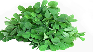Methi Benefits | Fenugreek Leaves Benefits