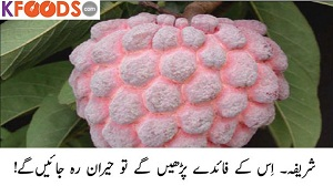 Shareefa Fruit Benefits in Urdu