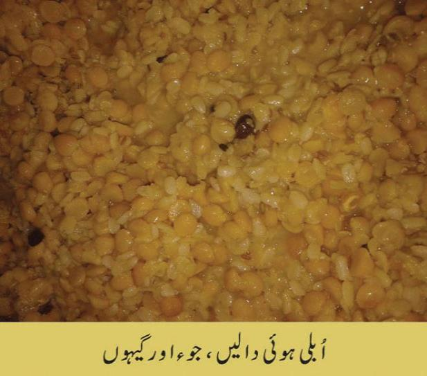haleem method in urdu