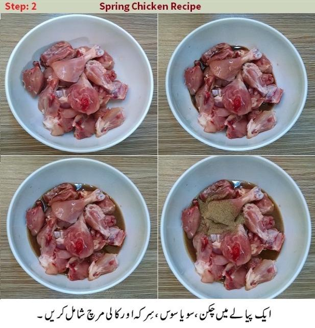 spring chicken recipe in urdu