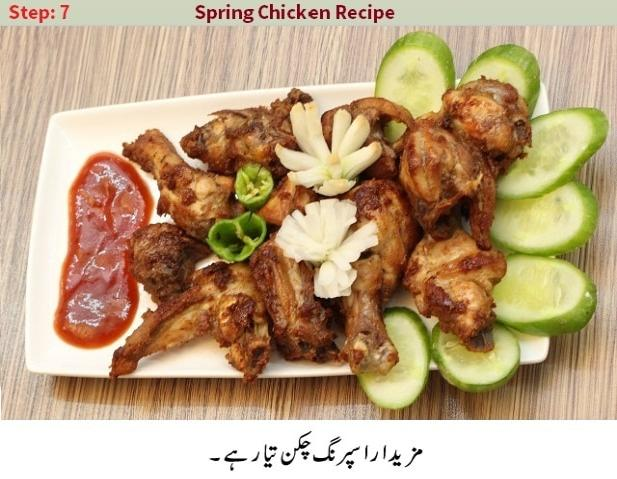 homemade spring chicken