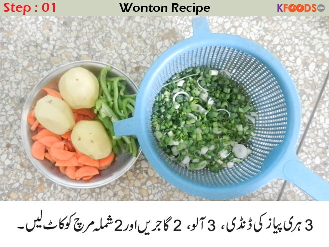 chicken wonton recipe