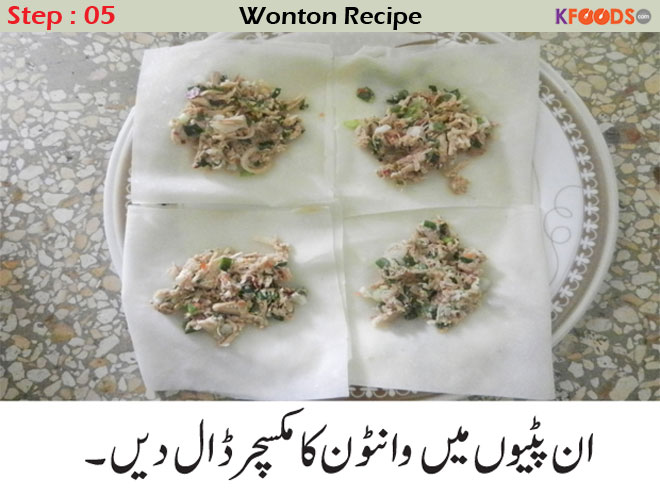 wonton recipes