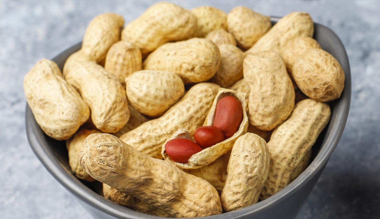 प्रतिदिन एक मुट्ठी मूंगफली खाने से आपके शरीर में क्या आश्चर्यजनक परिवर्तन होंगे? इसे जानकर आप इसे खाना बंद नहीं करेंगे