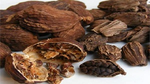 6 Health Benefits of Black Cardamom (Badi Elaichi)