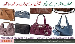Different Types of Ladies Handbags with Names & Uses