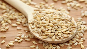 Jau (Barley) Benefits in Urdu