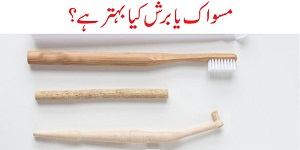 Miswak vs Toothbrush: Benefits and Comparison