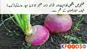 Shalgam Benefits in Urdu