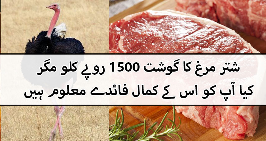 Shatar Murgh (Ostrich) Meat Benefits