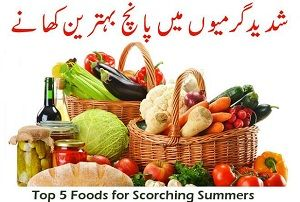 Top 5 Foods for Scorching Summers