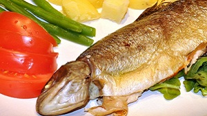 Trout Fish Spicy Recipe and Live Cooking