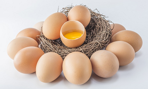 Why Egg Yolks Are Different Colors