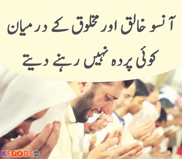 Aqwal e Zareen in Urdu Images Download | Islamic Aqwal