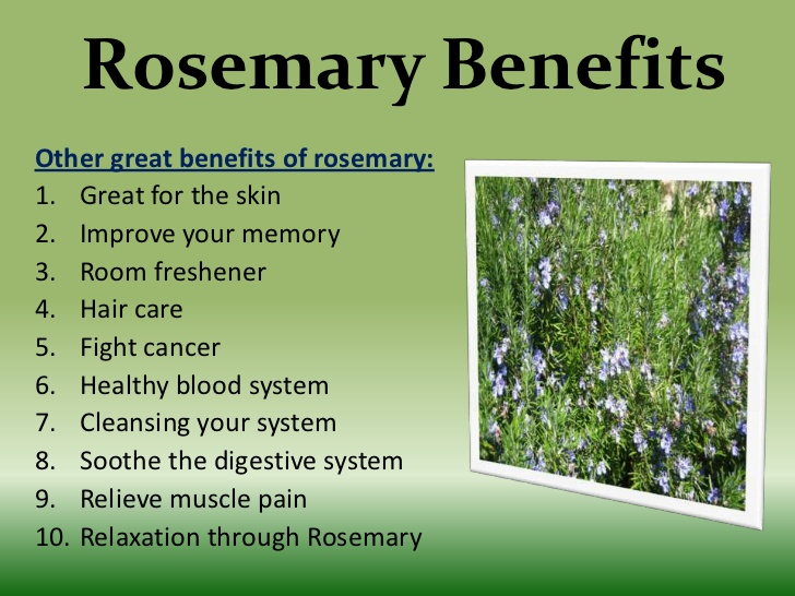 Top Rosemary Benefits