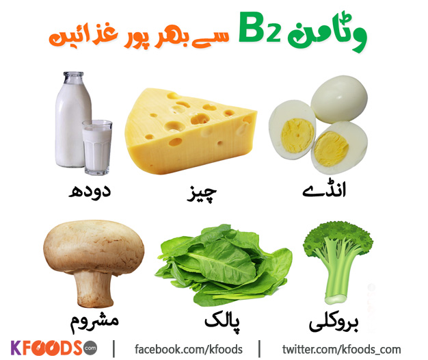 Vitamin B2 Rich Foods
