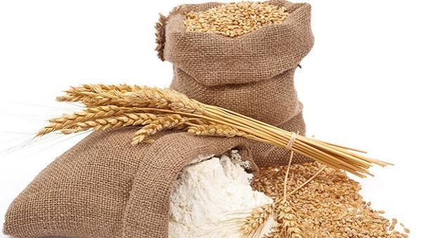 Save wheat flour from insects: